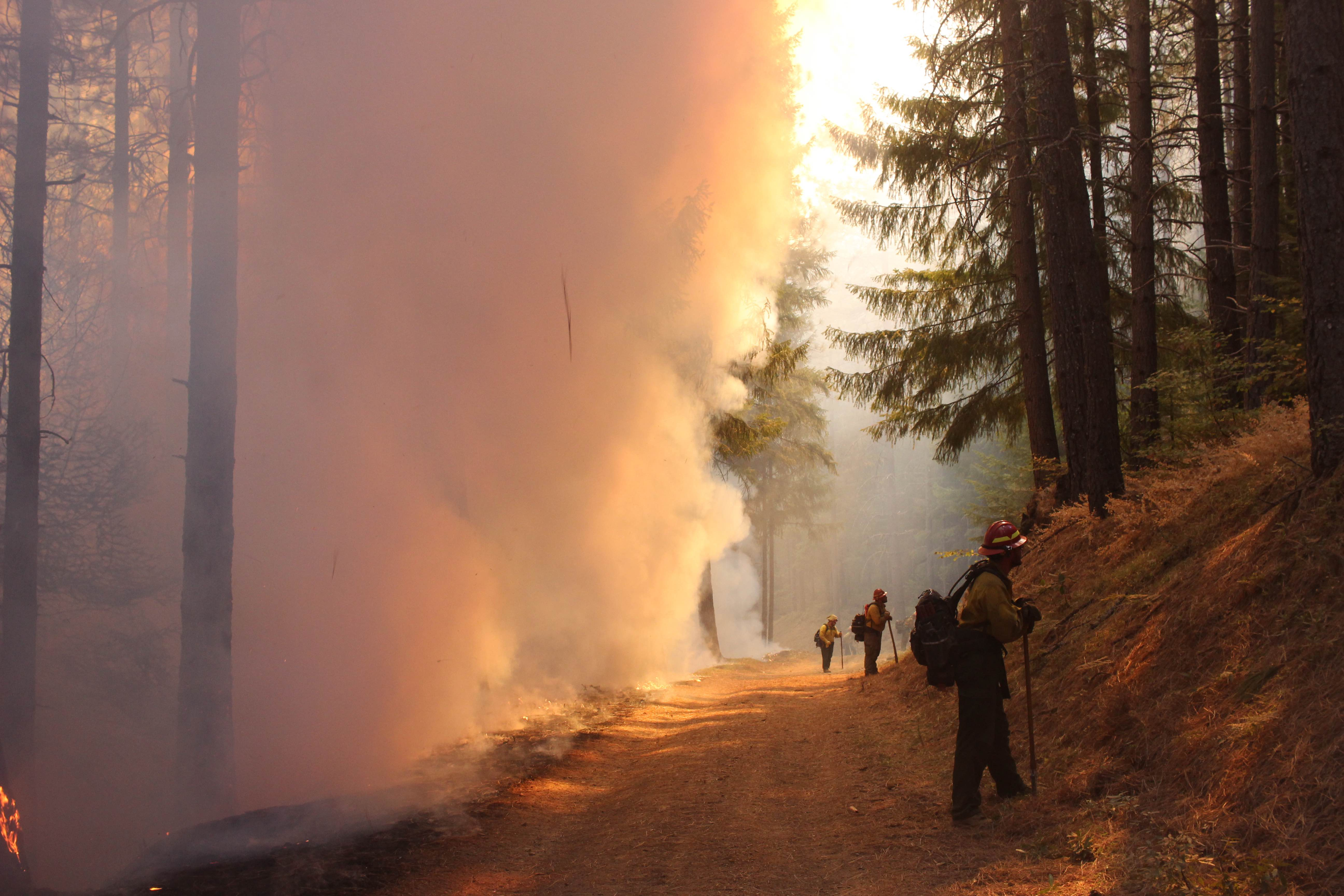 Firefighters battling the August Complex