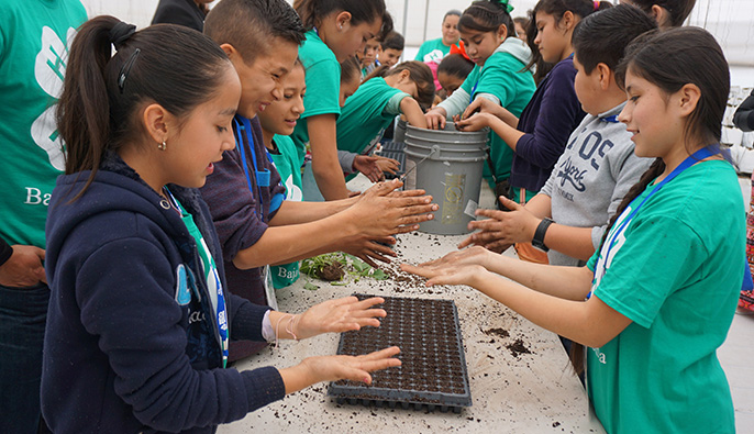 Children in Mexicali, Mexico, plant seeds while learning about food and agriculture.