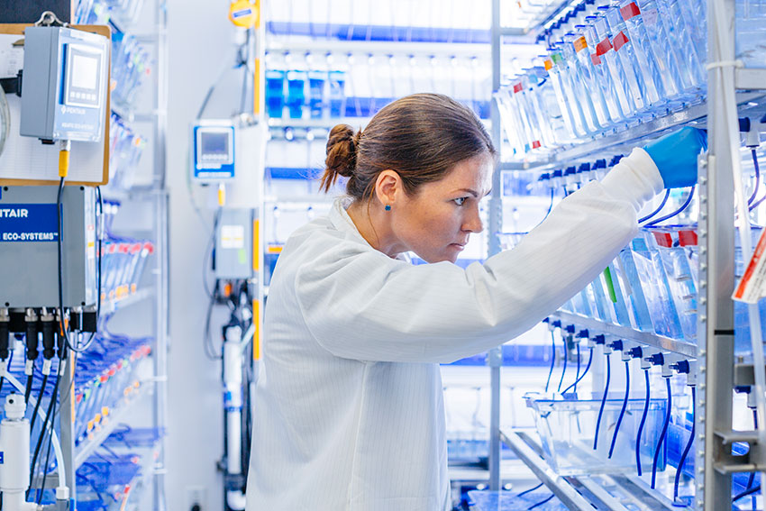 UCSF researcher in her lab
