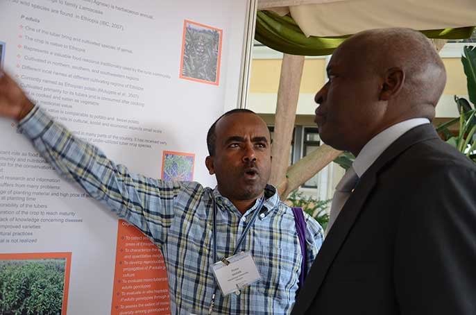 African Plant Breeding Academy launch