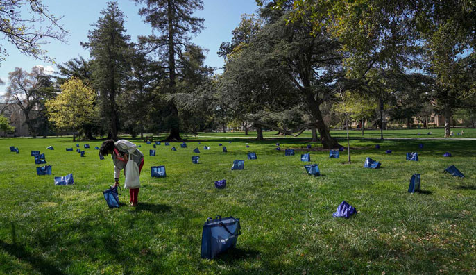 Aggie volunteer arranging food pickups on the lawn