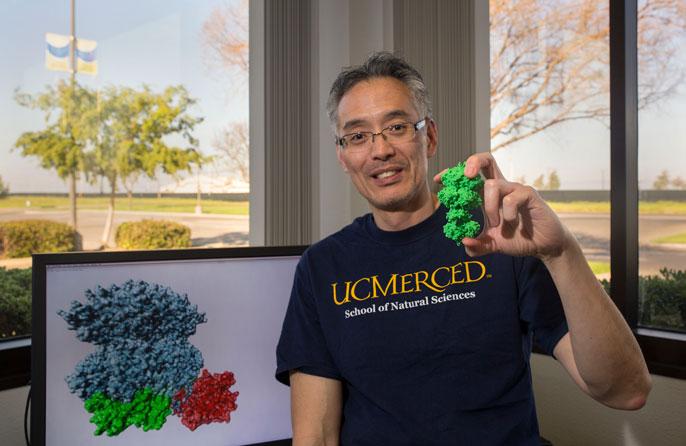 UC Merced Andy LiWang