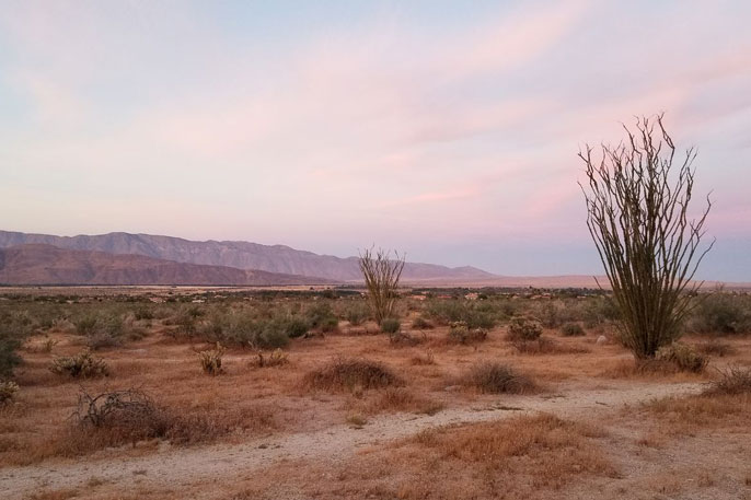Anza-Borrego State Park at sunset