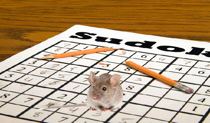 mouse on sudoku puzzle