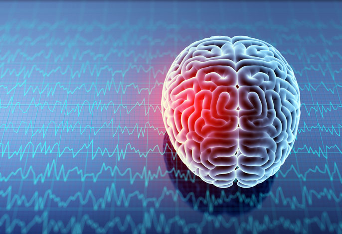 Electric impulses may help brain recover from shock