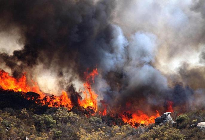 Buck Fire, Riverside County, 2012