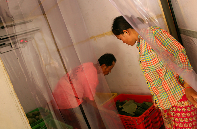 From left, farmers Pak Ry and Brap Yart carry a bin of sponge gourd and banana leaves into a CoolBot-equipped cold room in Cambodia, to keep the produce fresh before sale.