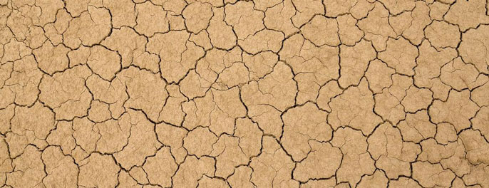Land cracked from heat