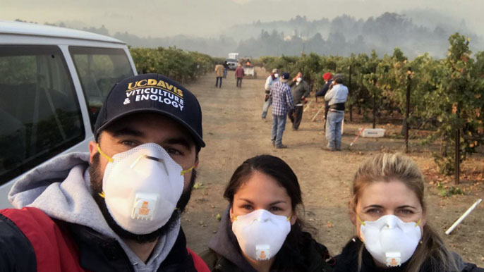 Three people with masks stand in a smoky vineyard