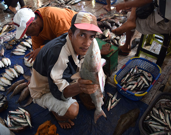 man in Indonesian fish market