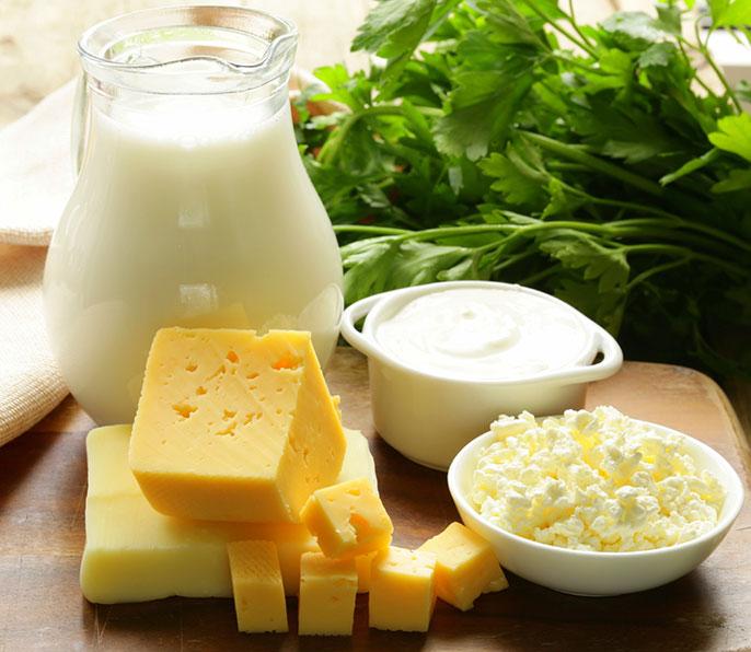 milk, yogurt, cheese