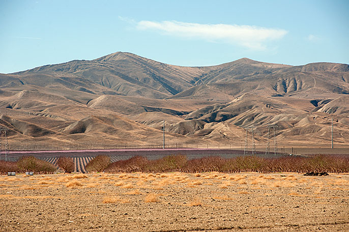 Dry fields and hills, San Joaquin, CA