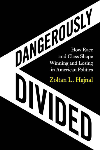 Dangerously Divided book cover
