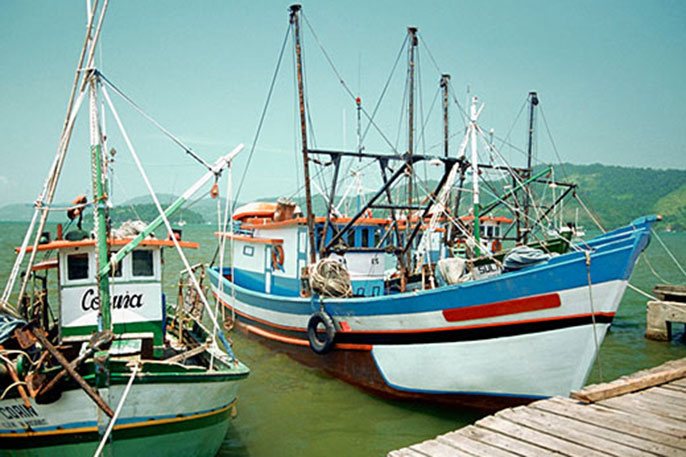 Fisheries need to improve sustainable practices before doing business on global seafood market.