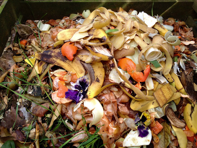 UC Sacramento food waste