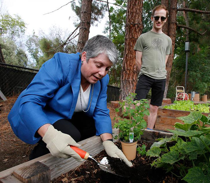 Janet Napolitano plants oregano with student Matt Orke