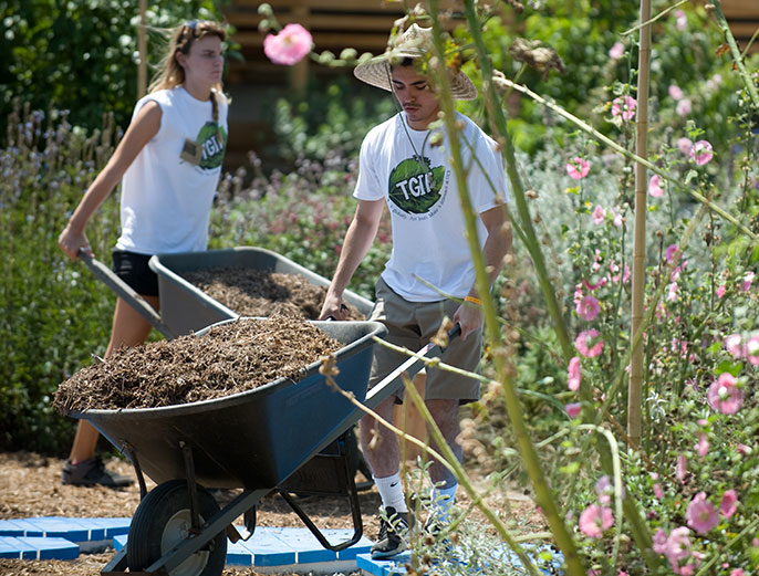 Irvine students in community garden