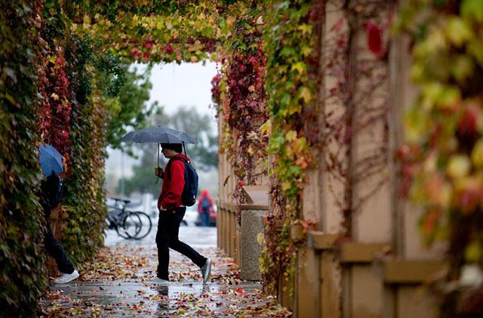 students walking in rain
