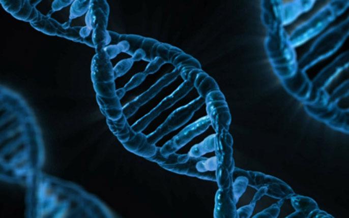 Junk DNA UC San Diego