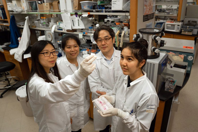 Kamata's team in the lab