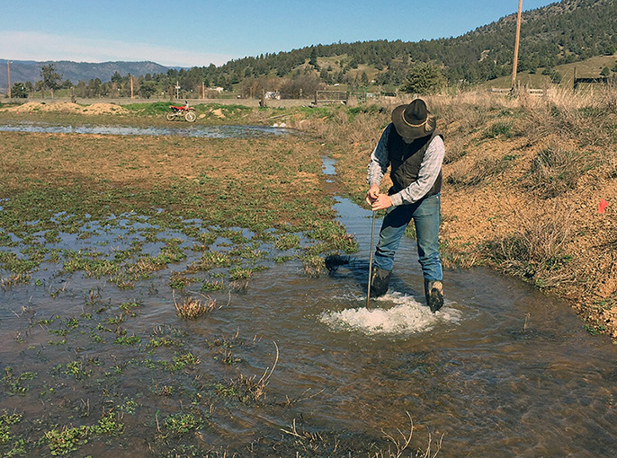Bryan-Morris Ranch manager Jim Morris stands in a flooded alfalfa field along the Scott River in Siskiyou County.