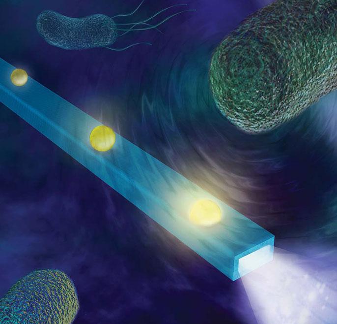 UC San Diego nanofiber