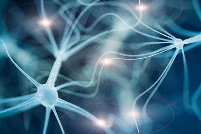 UCSF neuron autism