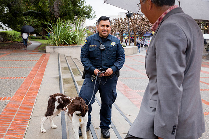Abused as a puppy, UC Berkeley's new police dog finds second