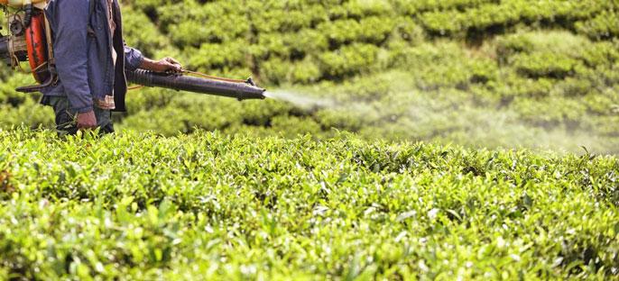 Pesticide sprayed on a field