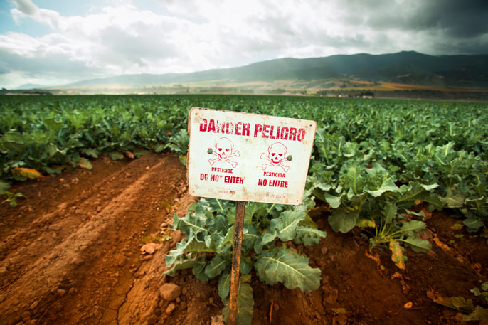 Salinas Valley pesticide