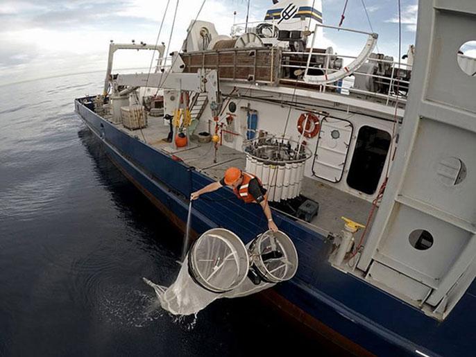 NOAA Fisheries researcher on Scripps boat