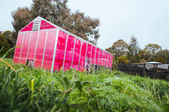 This solar greenhouse could change the way we eat university of california - Changes greener home can make right away ...