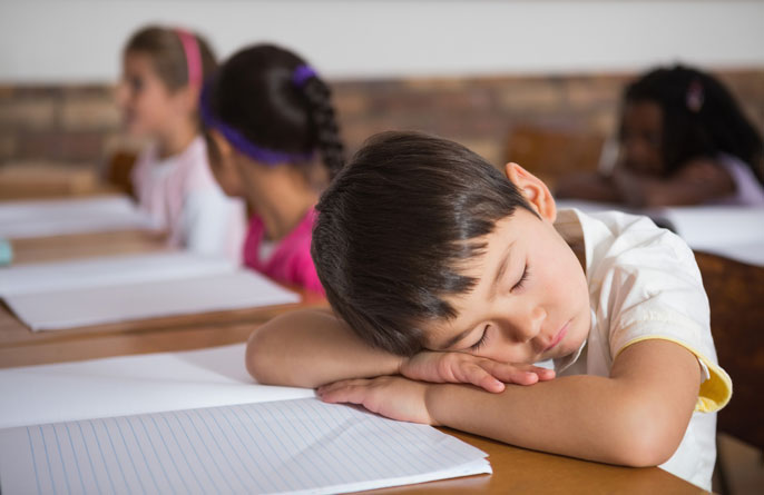 Child napping at desk