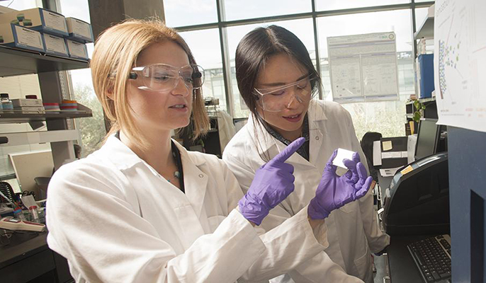 Food scientist Daniela Barile and graduate student Tian Tian study milk sugar compounds as part of a study showing the role these compounds play in nourishing health-promoting gut microbes in infants.