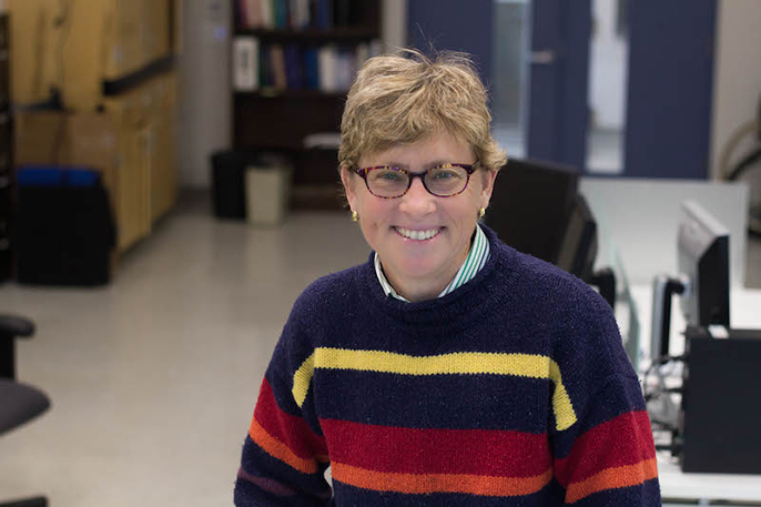 UC Davis civil and environmental engineering professor Deb Niemeier is among 11 UC researchers elected to the National Academy of Engineering.
