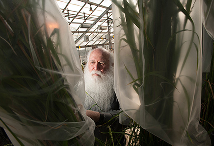 Howard Yana Shapiro, chief agricultural officer at Mars and researcher in plant sciences at UC Davis, will speak at the symposium about the African Orphan Crops Consortium.
