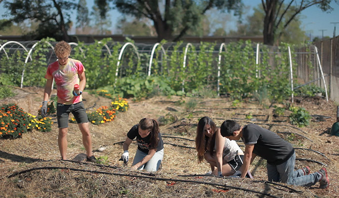 Students taking a new course on food justice at UCLA learn about the topic from the ground up. The course is part of a new food studies minor, one of a growing number of interdisciplinary programs that have become popular to take.