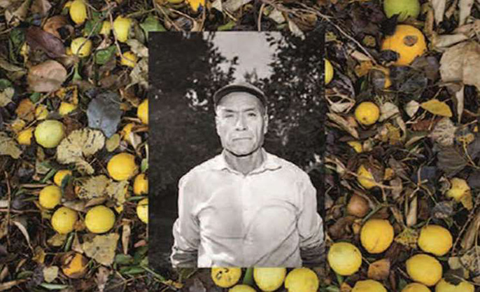"UCR researchers are uncovering hidden histories to help California Citrus State Historic Park tell a more inclusive story of the region's citrus industry and use creative means to draw attention to it. This image is from ""Manos, Espaldas y Blossoms (2017)"