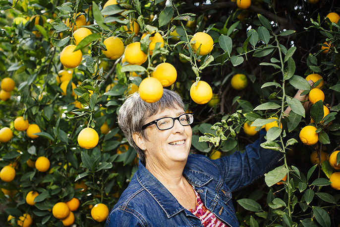 Tracy Kahn, curator of UC Riverside's Citrus Variety Collection