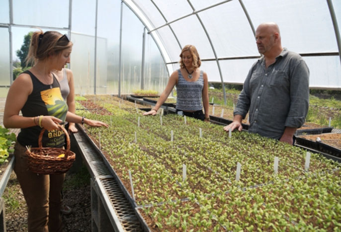"""Professor Ken Hiltner, UCSB's Sustainability Champion for 2014-2015, and a group of his students toured Goleta-based Fairview Gardens as part of his course """"The Rhetoric of the Anthropocene and Climate Change."""""""