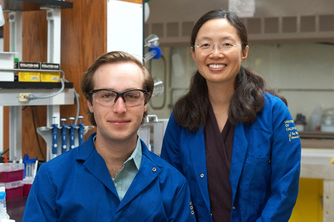 UC Santa Barbara's Irene Chen (right) was among the university's recipients of NIH's high-risk, high-reward research grants.