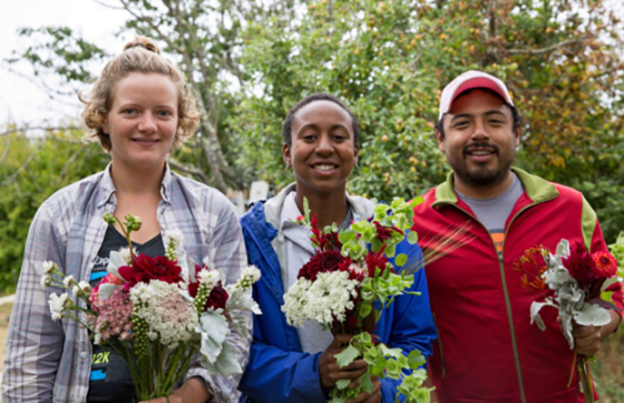 Applications are now being accepted for the 2017 Apprenticeship in Ecological Horticulture at UC Santa Cruz, now in its 50th year, the longest running university-based organic farming and gardening training program in the U.S.