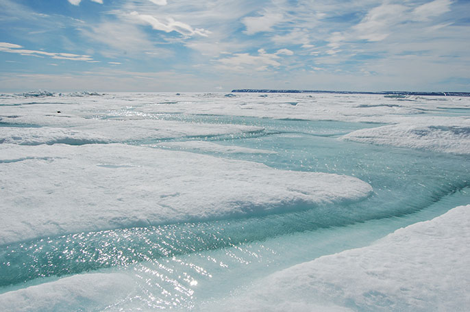 coastal sea ice, Arctic Ocean