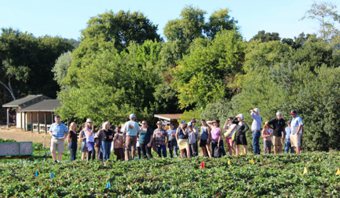 Conference particpants got out into the fields of local farms and ranches including the UC Santa Cruz Farm.