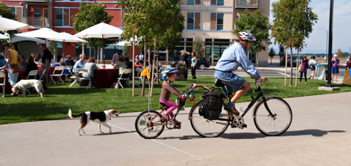 Man on bike towing a child bike carrier with dog following