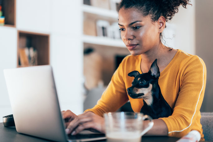 Young Black woman with small dog working on computer together