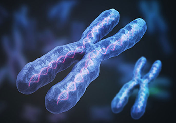 X chromosome floating in blue background