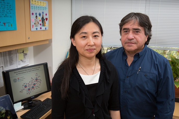 Researchers Yang and Gomez Pinilla